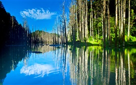 Preview wallpaper Beautiful nature scenery, lake, trees, water reflection, sun