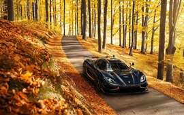 Preview wallpaper Koenigsegg Agera RS black supercar, autumn, trees