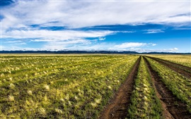 Preview wallpaper Mongolia, beautiful nature scenery, field, blue sky, clouds