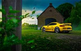 Porsche Cayman GT4 amarilla superdeportivo, casa, árbol, hierba