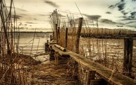 Rio, ponte de madeira, cana, crepúsculo