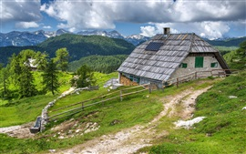 Slovenia, Bohinj, house, mountains, clouds, forest, fence, path