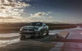Preview wallpaper 2015 Ford Mustang GT Muscle car front view