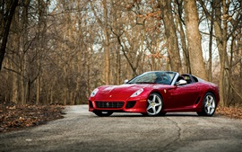Preview wallpaper Ferrari red supercar, trees, road