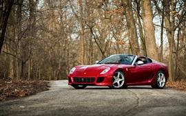 Ferrari red supercar, trees, road