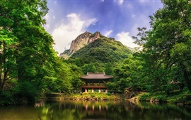 Park, trees, mountain, lake, arbor, China