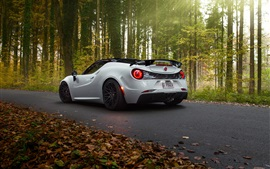 Pogea Racing Alfa Romeo 4C, white supercar, forest, road