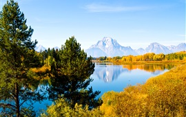 Preview wallpaper Grand Teton National Park, Wyoming, USA, trees, lake, mountains