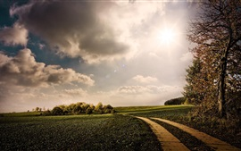 Preview wallpaper Nature, green fields, path, trees, sunshine, clouds