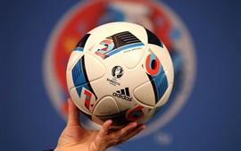 Aperçu fond d'écran le football Adidas pour l'UEFA EURO 2016, France