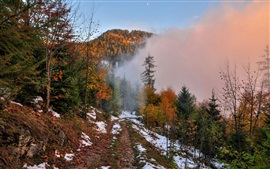 Preview wallpaper Autumn, mountain, footpath, snow, forest, trees, fog, dawn