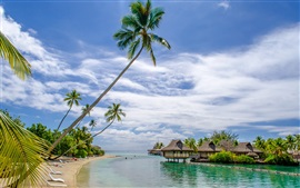 Preview wallpaper Beach, sea, resort, house, palm trees, tropical