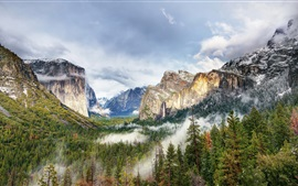 Hermosas Parque Yosemite, montañas, bosque, árboles, nubes, niebla, EE.UU.