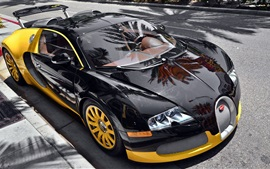Bugatti Veyron luxury car parked on the roadside