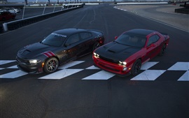 Preview wallpaper Dodge Challenger SRT cars, two supercars