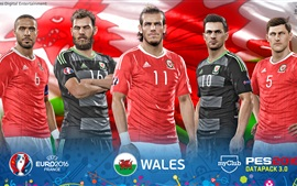 Preview wallpaper EURO 2016 Wales, PES 2016 game