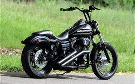 motocicleta negro Harley-Davidson Chopper