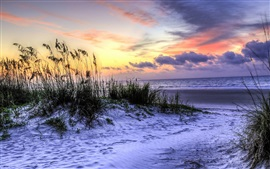 Preview wallpaper Hilton Head Island, South Carolina, USA, beach, grass, sea, sunset