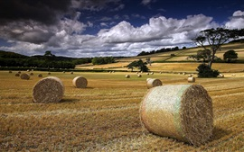 Preview wallpaper Summer, farm field, hay, clouds