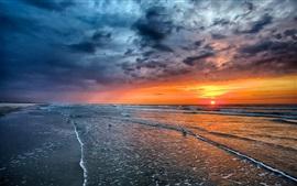 Por do sol, mar, praia, costa, ondas, pássaros