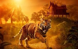 Preview wallpaper Tiger close-up, predator, eyes, teeth, house, sunset