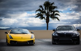Yellow Lamborghini and black BMW cars front view