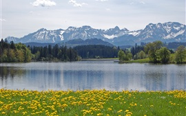 Preview wallpaper Alps, Schwaltenweiher, Germany, mountains, trees, lake