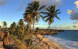 Preview wallpaper Bottom Bay Beach, Barbados, Caribbean, beautiful tropical scenery