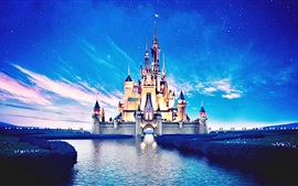 Disneyland castelo, bela vista noite, rio