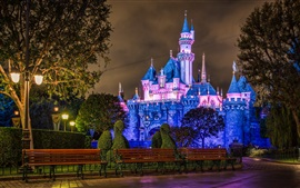 Preview wallpaper Disneyland, castle, blue style, night
