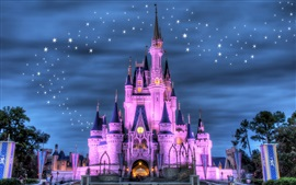 Preview wallpaper Disneyland, castle, night, lights, stars, purple style