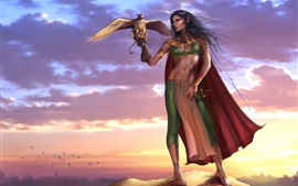Preview wallpaper Gryphon lady, elf, warrior, birds, sunset, fantasy girl