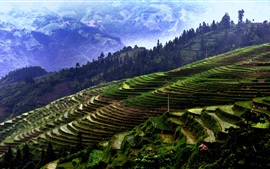 Preview wallpaper Jiaban Terraces, China Guizhou, mountains, trees, fields