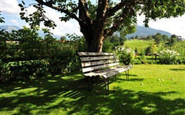 Preview wallpaper Kitzbuhel, Austria, summer, trees, bench, grass
