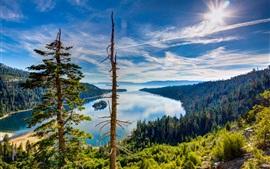预览壁纸 太浩湖,加利福尼亚州,美国,顶视图,森林