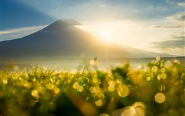 Preview wallpaper Mountain, sun rays, sunrise, grass, dew, flare, bokeh