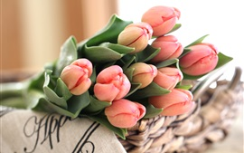 Preview wallpaper Pink tulips, bouquet, flower buds