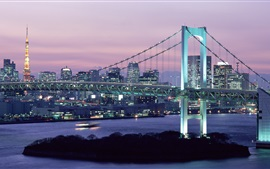 Preview wallpaper Rainbow Bridge, dusk, skyscrapers, lights, Tokyo, Japan