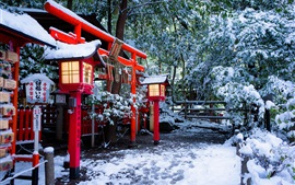 Preview wallpaper Shrine, Torii gate, Kyoto, Japan, winter, snow, trees