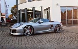 Preview wallpaper TechArt Porsche Boxster silver roadster side view