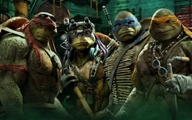 Preview wallpaper Teenage Mutant Ninja Turtles movie HD