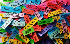 Thanks of different language, colorful paper pieces