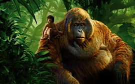 Preview wallpaper The Jungle Book 2016, boy and gorilla