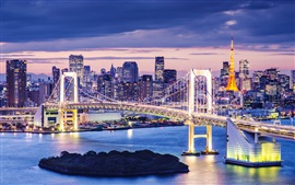 Preview wallpaper Tokyo, Japan, beautiful city night, skyscrapers, bay, bridge, illumination