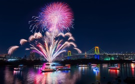 Tokyo, city, fireworks, beautiful night, bay, bridge, illumination, Japan
