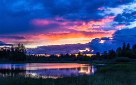 Trees, sky, clouds, lake, grass, sunset