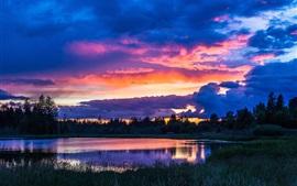 Árboles, cielo, nubes, lago, hierba, puesta del sol