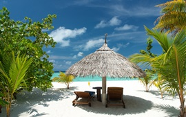 Preview wallpaper Tropical beach, sand, palm trees, sea, vacation, summer