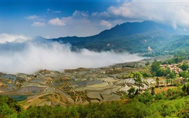Yuanyang terraces, China Yunnan, beautiful view, fog, mountains