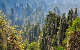 Preview wallpaper Zhangjiajie beautiful natural scenery, rocky mountain cliffs, China
